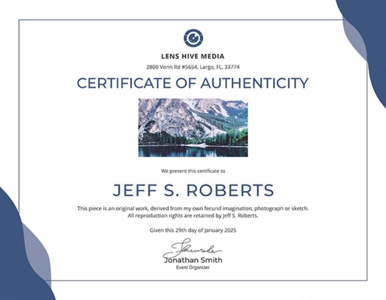 Certificate Of Authenticity: Templates, Design Tips, Fake Within Certificate Of Authenticity Template