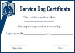 Service Dog Certificate Template Free | Service Dogs For Best Service Dog Certificate Template